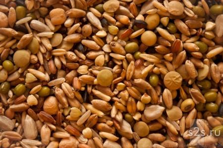 Зерносмесь Состав ячмень, пшеница, рис, горох, гречка